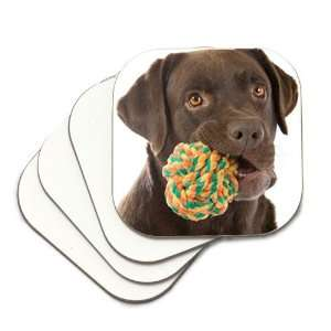 Chocolate Lab Labrador Retriever Dog with Toy Coasters