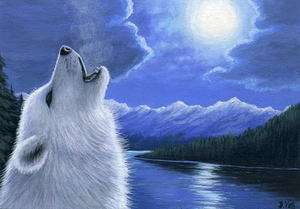White wolf moon lake limited edition aceo print art