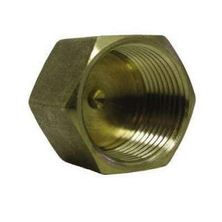Watts 3/8 In. Brass FIP Pipe Cap A 769