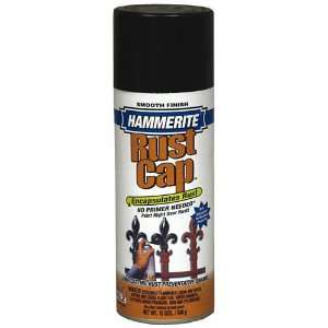 Smooth Aerosol Spray Paint, Flat Black Patio, Lawn & Garden